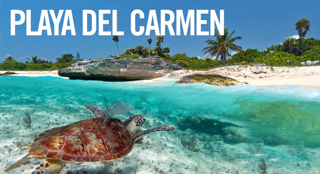 Free Things To Do in Playa del Carmen!